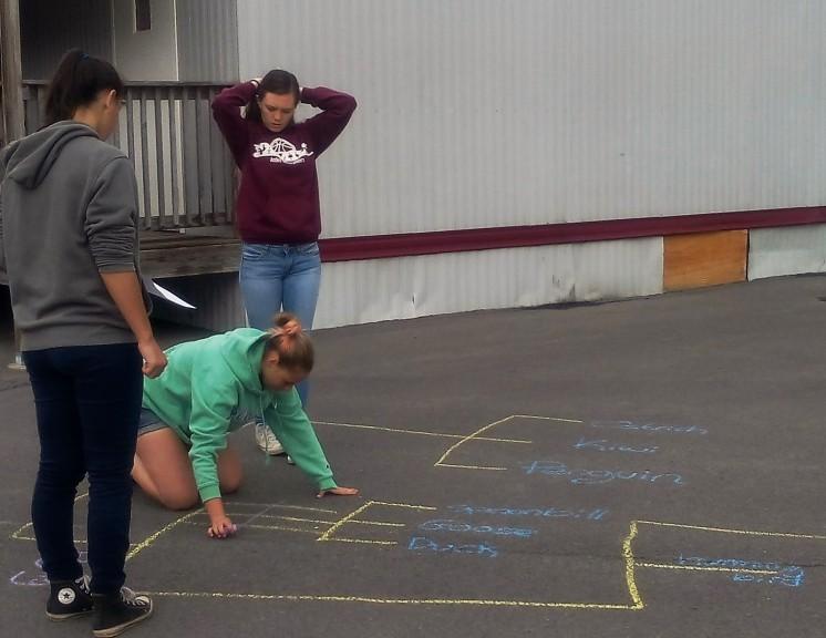 student chalk tree 1
